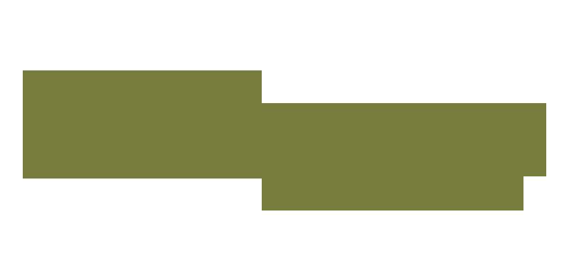 Dokugaa